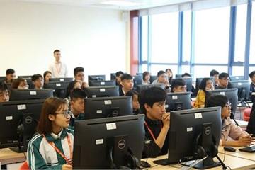 Website các Sở GD&ĐT phải công khai danh sách trung tâm ngoại ngữ, tin học được cấp phép