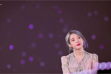 Cả showbiz Hàn dồn sự lo lắng cho IU sau khi Goo Hara qua đời