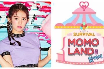 Bị đối xử bất công, nữ idol Kpop tố Momoland gian lận tuyển chọn thành viên