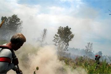ASEAN sẽ trở thành khu vực không có khói bụi vào năm 2020?