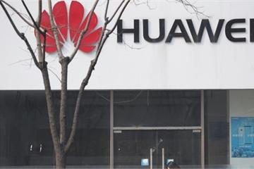 Huawei sẽ live stream họp báo bất thường giữa tâm điểm nóng dẫn độ Mạnh Vãn Chu
