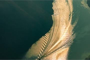 """Ngỡ ngàng với """"chim hồng hạc"""" trên dòng sông Nho Quế"""