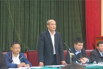 Hà Nội chi 3,6 tỷ đồng chặt hạ, đánh chuyển cây xanh mở rộng đường Láng