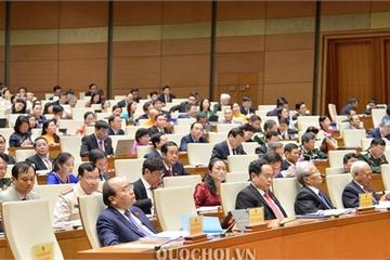 Hôm nay, Quốc hội thảo luận Luật Giáo dục (sửa đổi) và Luật Kiến trúc