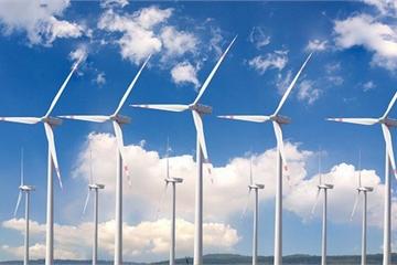 Điện mặt trời, điện gió kêu ế, điện lực không mua: EVN nói gì?
