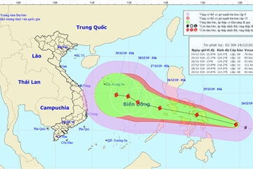 Hỏa tốc ứng phó với cơn bão Phanfone