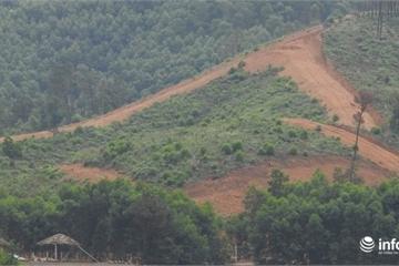Hà Tĩnh: Chủ trang trại xây sân golf dù chưa được phê duyệt? (Bài 2)