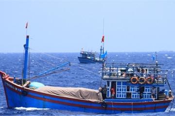 Việt Nam yêu cầu Trung Quốc bồi thường thỏa đáng cho ngư dân ở Hoàng Sa