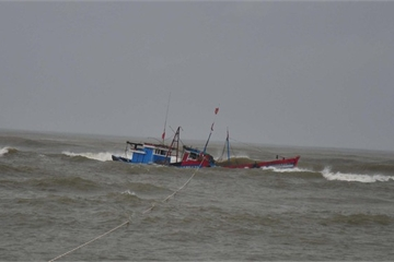 Đã tìm thấy 4 thi thể ngư dân của tàu cá bị chìm trong đêm tại biển Bình Thuận