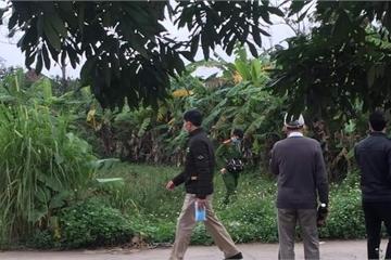 Ninh Bình: Phát hiện một thi thể đang phân hủy bên vườn chuối