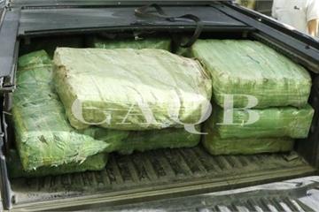 Quảng Bình: Bắt 4 đối tượng trong đường dây vận chuyển hơn 300kg ma túy đá