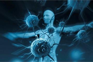 Tin vui cho hàng nghìn bệnh nhân ung thư về liệu pháp thử nghiệm của ĐH Y Hà Nội