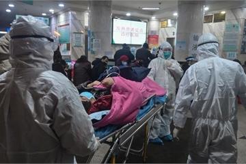 806 người tử vong, VN 83 ca nghi nhiễm, chưa thể dự đoán kết thúc dịch nCoV