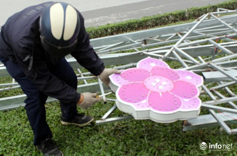 Trang trí hoa đào trên đường đẹp nhất Thủ đô: Chưa xong đã dỡ - ảnh 12