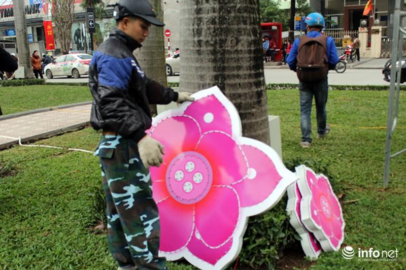 Trang trí hoa đào trên đường đẹp nhất Thủ đô: Chưa xong đã dỡ - ảnh 8