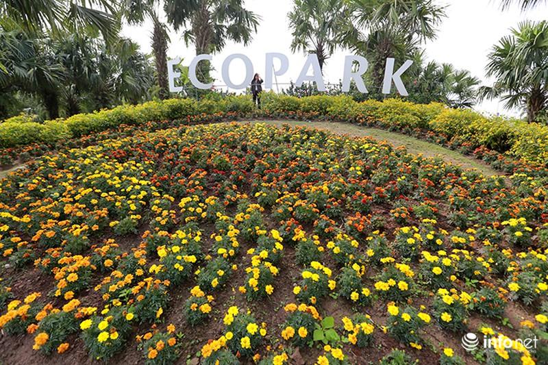 Nhiều không gian giải trí mới lạ tại lễ hội hoa Xuân lớn nhất miền Bắc - ảnh 14