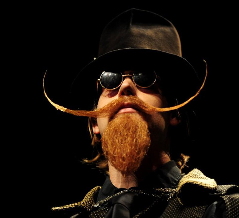 Phì cười với những bộ râu độc đáo nhất thế giới - ảnh 5