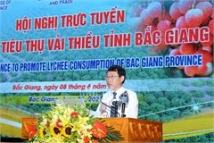 Dịch Covid-19 phức tạp: Bắc Giang xây dựng 3 kịch bản thu hoạch và tiêu thụ vải thiều