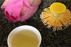Hai cách ướp trà sen thông dụng nhất