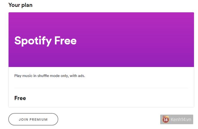 Thử mua Spotify Premium rẻ gấp 20 lần giá thường: Lừa thì không lừa, nhưng may rủi tùy số phận - Ảnh 2.