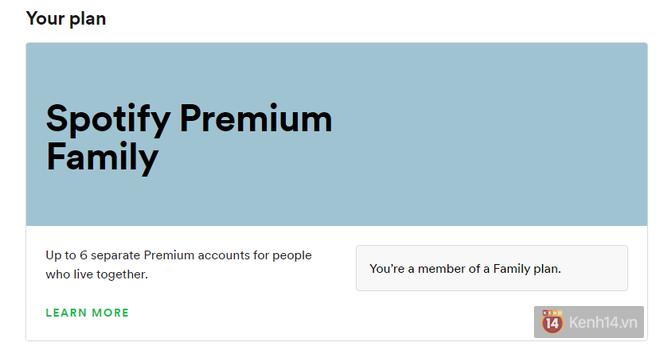 Thử mua Spotify Premium rẻ gấp 20 lần giá thường: Lừa thì không lừa, nhưng may rủi tùy số phận - Ảnh 3.