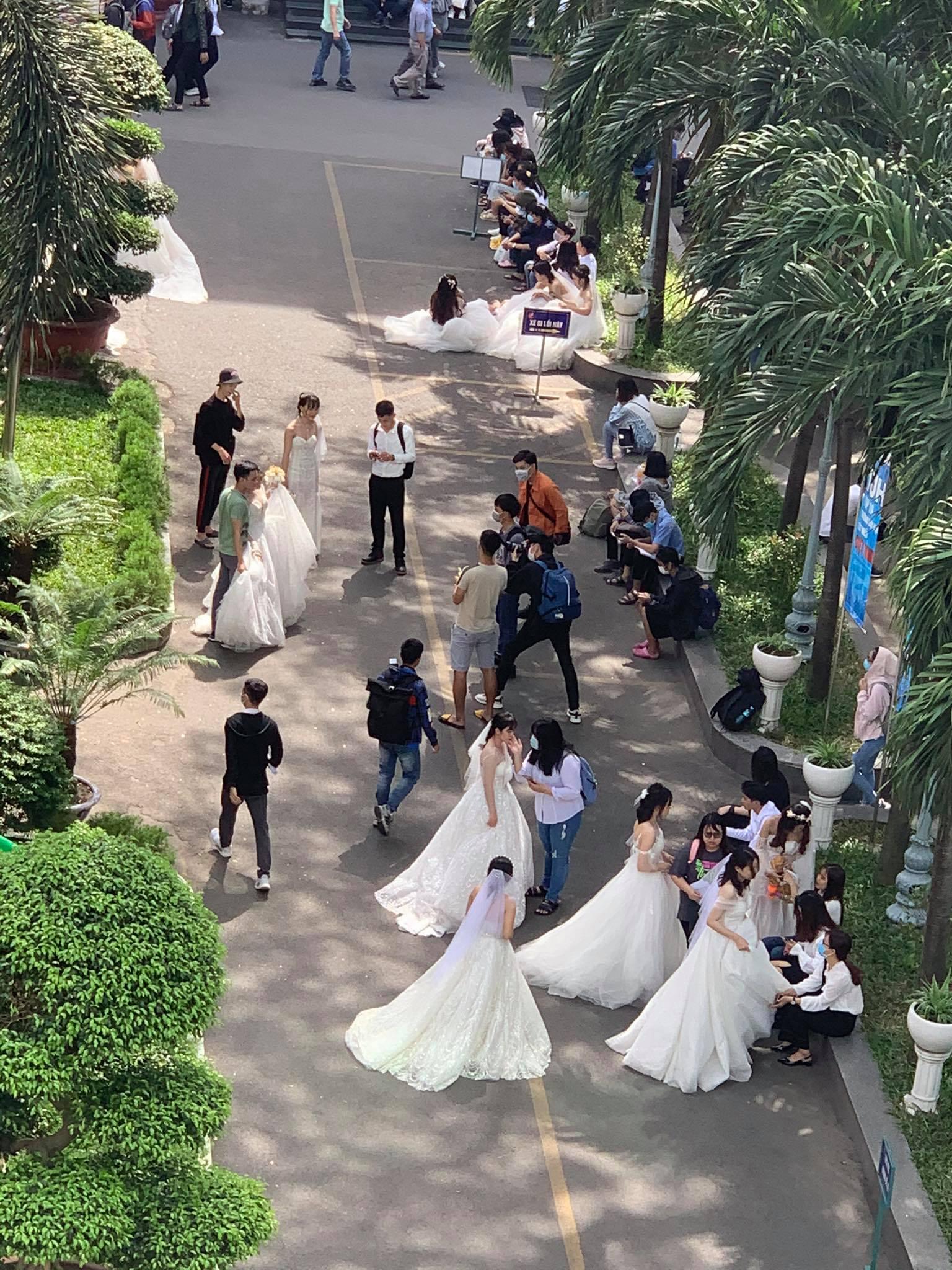 Trường ĐH xuất hiện hàng loạt nữ sinh mặc váy cưới, dân tình rủ nhau lập team đến để được phát cô dâu - Ảnh 2.