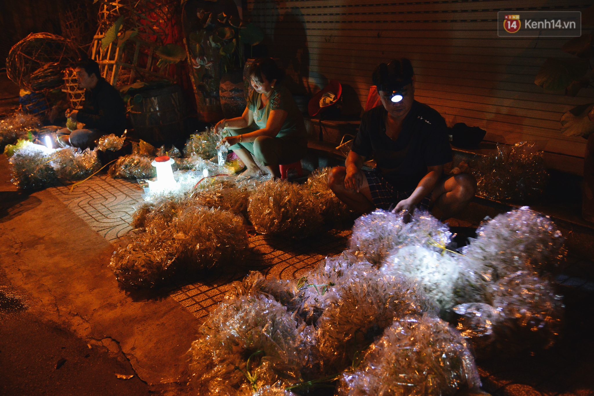 Cận cảnh chợ côn trùng độc nhất Sài Gòn, mỗi ngày chỉ họp đúng 2 tiếng lúc nửa đêm - Ảnh 3.