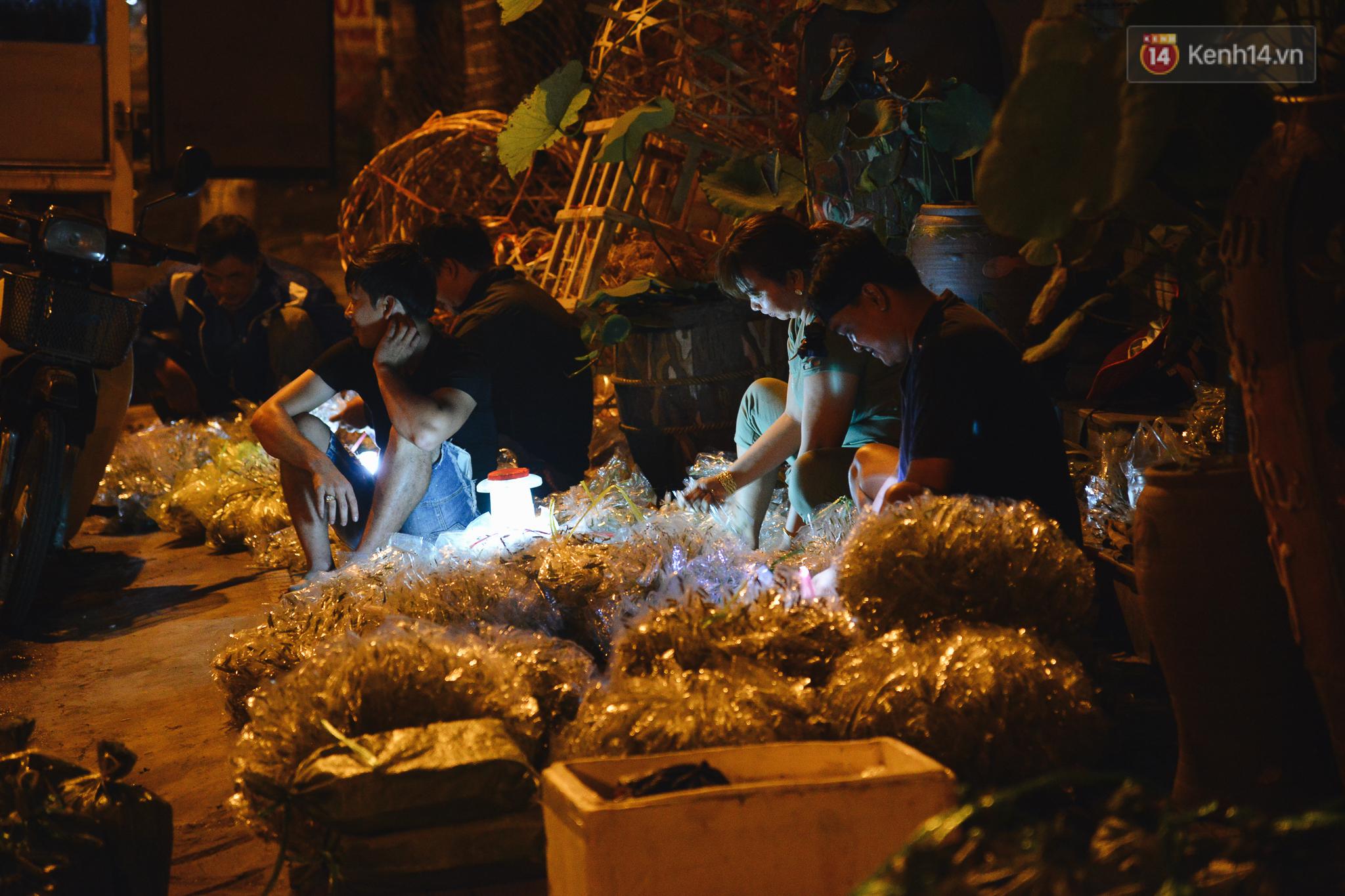 Cận cảnh chợ côn trùng độc nhất Sài Gòn, mỗi ngày chỉ họp đúng 2 tiếng lúc nửa đêm - Ảnh 5.