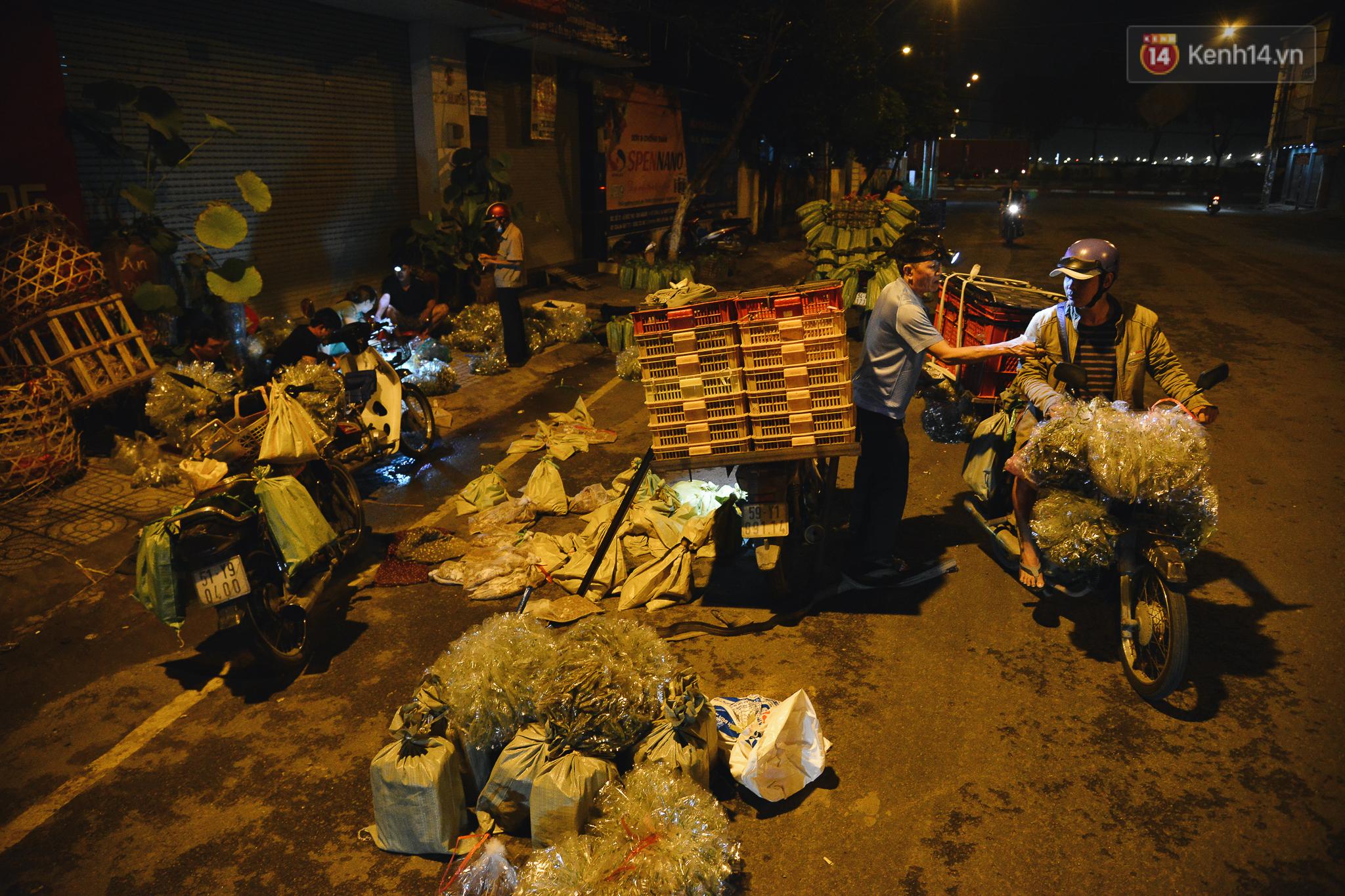 Cận cảnh chợ côn trùng độc nhất Sài Gòn, mỗi ngày chỉ họp đúng 2 tiếng lúc nửa đêm - Ảnh 1.