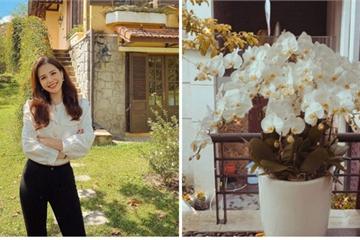 Vợ Tổng Giám đốc tập đoàn Cocobay khoe nhẹ vài góc nhà chuẩn bị đón Tết, netizen choáng ngợp vì độ xa hoa