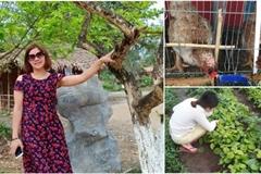 Tự trồng rau, nuôi gà trên sân thượng, mẹ đảm Hà Nội một tháng đi chợ 2 lần, tiêu không quá 1,5 triệu đồng