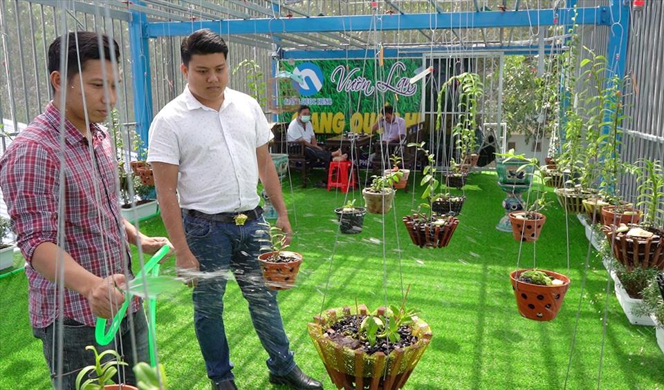 Hiện tại, anh Giang và anh Hùnfg vẫn tập trung vào công việc chính, và dành thêm thời gian rảnh rỗi để chơi lan. Ảnh: TR.L.