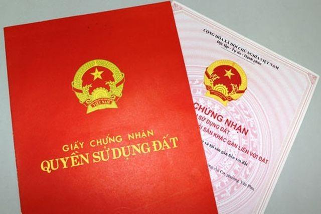 Ảnh: Nguyễn Hà