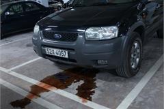Cách khắc phục hiện tượng xe ô tô chảy dầu