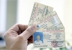 Mất giấy phép lái xe ô tô được xin cấp lại mấy lần?