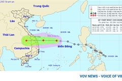 Tropical low depression to hit central Vietnam October 16