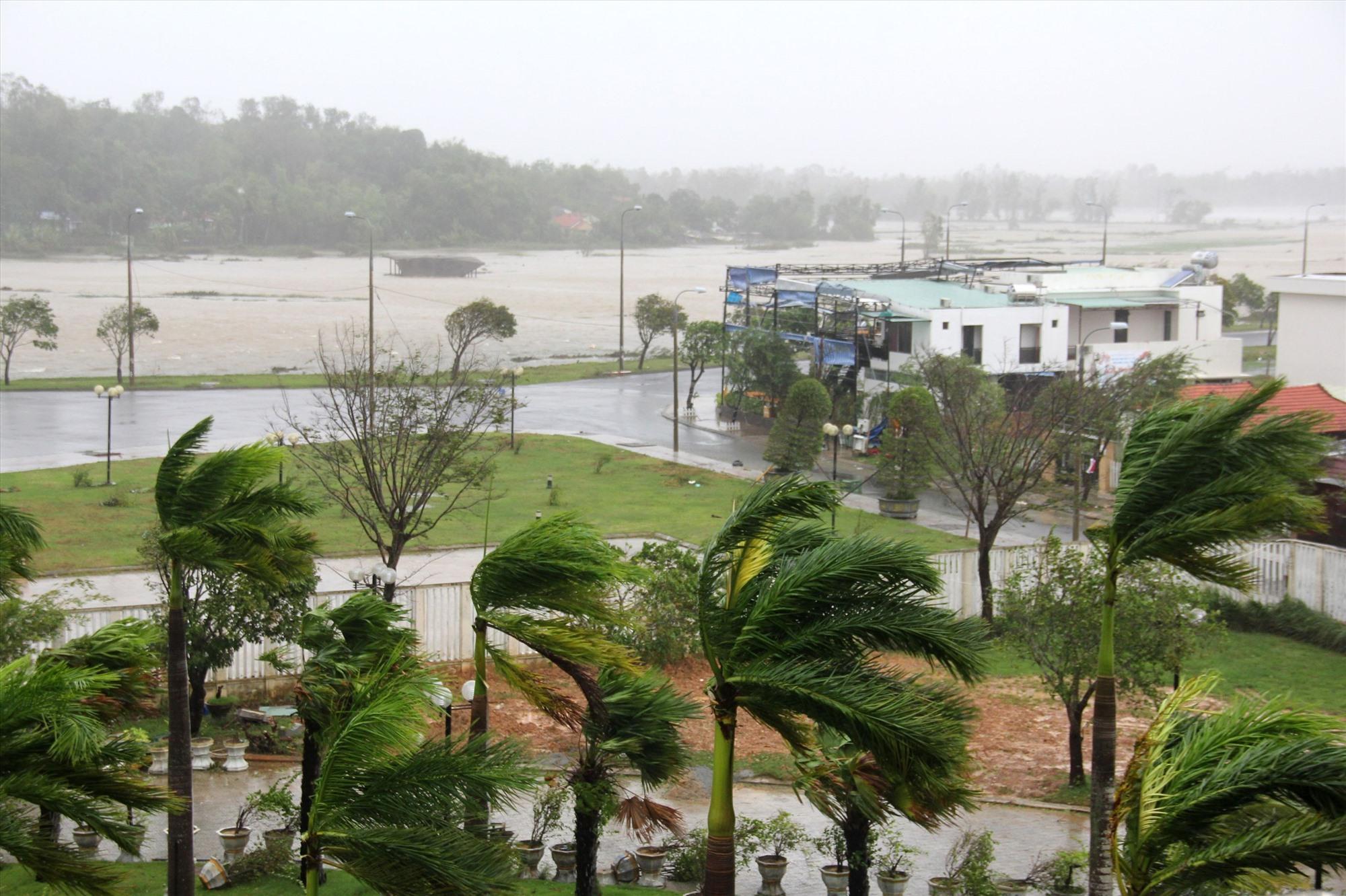 Gió mạnh khiến hàng dừa cảnh trước khách sạn Bàn Thạch bị xiêu vẹo