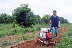 Người phụ nữ bỏ phố thị về quê lăn lộn nắng mưa cày xới đất cằn lập trang trại măng tây