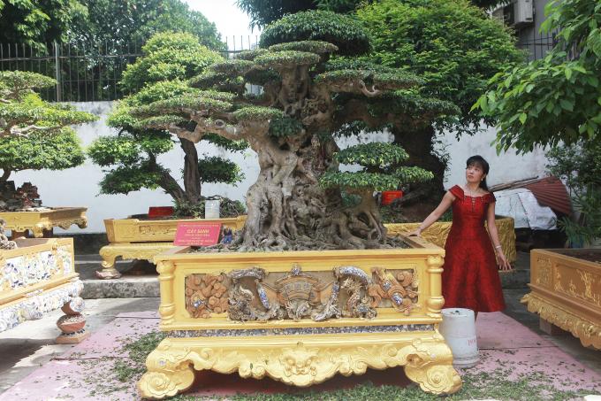 """Bên cạnh tác phẩm """"Ngõ hổ tàng long"""" là tác phẩm sanh cổ """"Tiên lão giáng trần"""" được mua với giá 28 tỷ đồng vào giữa năm nay. Ông Toàn chia sẻ, nếu đắt gắp đôi, tôi vẫn mua vì đây là tác phẩm sanh cổ đẹp nhất Việt Nam."""