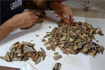 'Mở cửa' mộ cổ 41.000 năm, phát hiện hài cốt là... một loài người khác