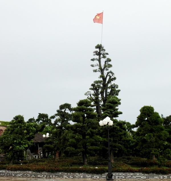 Choáng ngợp trước dinh thự lớn nhất Nam Bộ của đại gia Trầm Bê - Ảnh 7