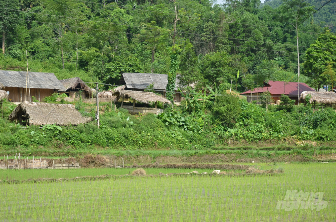 Một góc bản làng của người Thủy. Ảnh: Dương Đình Tường.