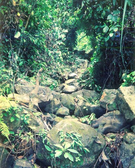 Đoạn suối cạn đầy đá dẫn lên núi Mã Cú. Ảnh: T.P.