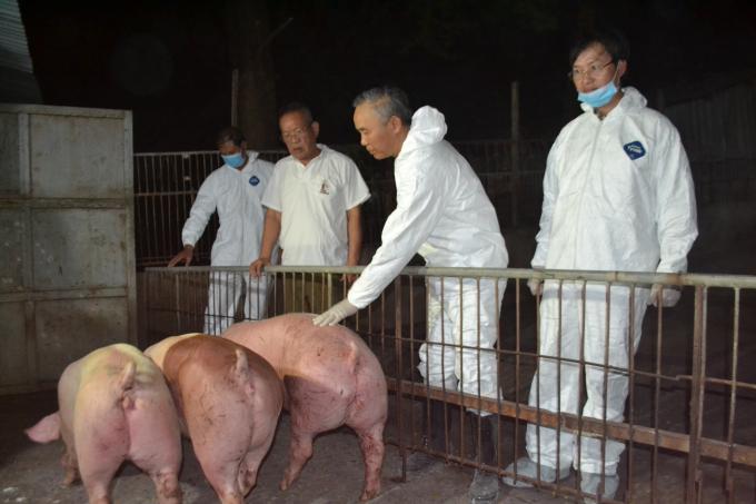 Thứ trưởng Phùng Đức Tiến yêu cầu đảm bảo an toàn dịch bệnh trong việc nhập khẩu heo sống vào Việt Nam. Ảnh: Trần Trung.