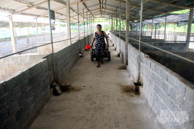 Bốn dãy chuồng nuôi lợn nái và lợn con được thiết kế thoáng mát, giữa 2 dãy chuồng có lối đi cho lợn ăn. Chuồng có kích thước 2,5x5m; tường chỉ xây cao khoảng 30 cm sau đó được hàn bằng thép, cao 0,9 m. Với chiều cao này, những chú lợn rừng thuần chủng Thái Lan không thể 'vọt qua'. Ảnh: Việt Khánh.