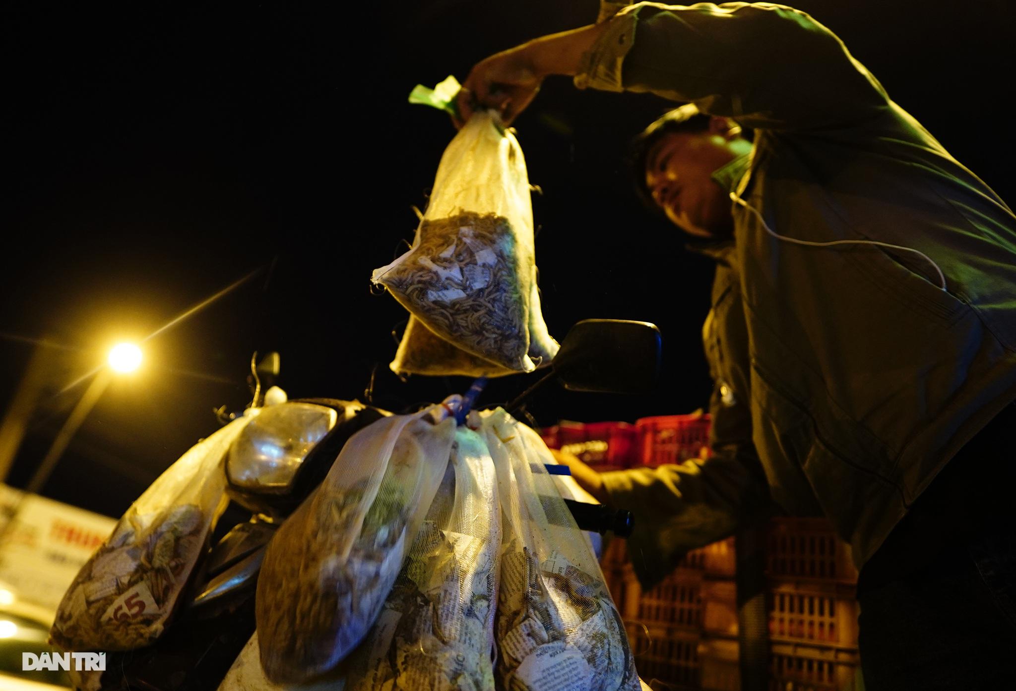 Sâu gạo (sâu Superworm) là loại thức ăn bổ dưỡng và khoái khẩu của nhiều loại chim ăn sâu cũng như một số loài cá cảnh (đặc biệt là cá rồng). Hiện nay, một số người chơi chim, cá cảnh tự nhân giống và nuôi sâu gạo làm thức ăn cho thú cưng của mình.