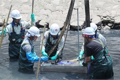 Japanese team gives up project to revive Hanoi's polluted river