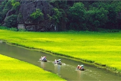 Vietnamese people to travel confidently domestically: Google