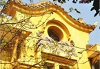 Urgent conservation of old French villas in Hanoi