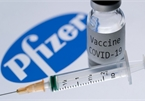 Vietnam likely to ink contract of Pfizer-BioNTech vaccine today